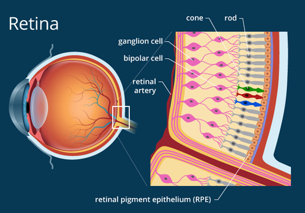 Best Eye Hospital in Bangalore for Laser Treatment