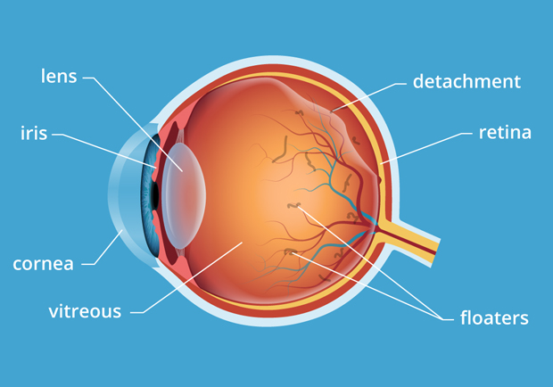 Best Eye Testing Centers in Bangalore